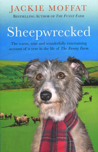 Sheepwrecked (Paperback)