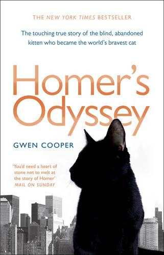 Homer's Odyssey (Paperback)