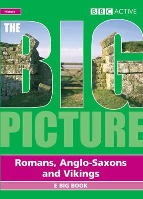 Big Picture Romans, Saxons and Vikings Multi User Licence - Big Picture
