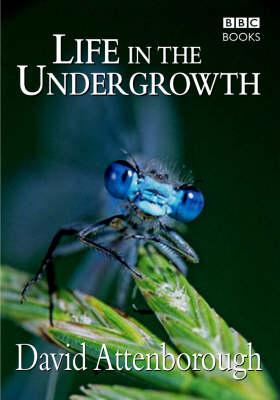 Life in the Undergrowth (Hardback)