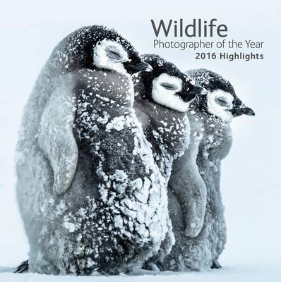 Wildlife Photographer of the Year: 2016 Highlights (Paperback)