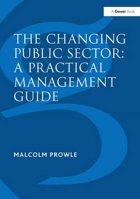 The Changing Public Sector: A Practical Management Guide (Hardback)