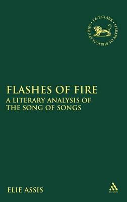 Flashes of Fire: A Literary Analysis of the Song of Songs - The Library of Hebrew Bible/Old Testament Studies v. 503 (Hardback)