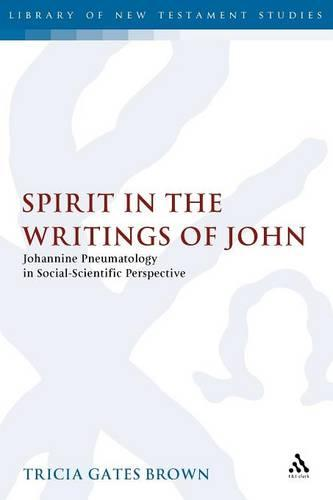Spirit in the Writings of John - Journal for the Study of the New Testament Supplement S. v. 253 (Paperback)
