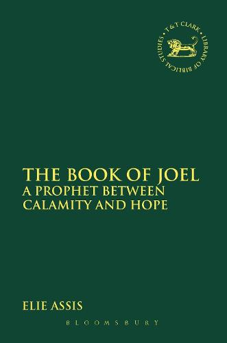 The Book of Joel: A Prophet between Calamity and Hope - The Library of Hebrew Bible/Old Testament Studies (Hardback)