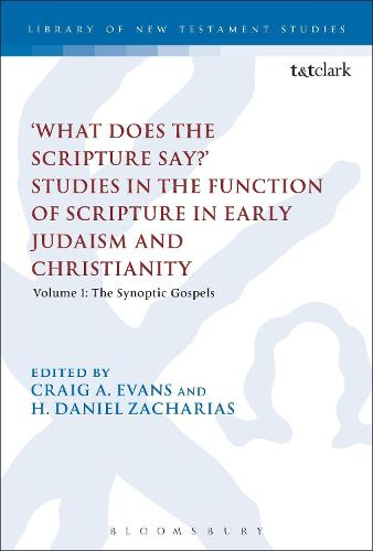 'What Does the Scripture Say?' Studies in the Function of Scripture in Early Judaism and Christianity: Volume 1: The Synoptic Gospels - The Library of New Testament Studies (Paperback)