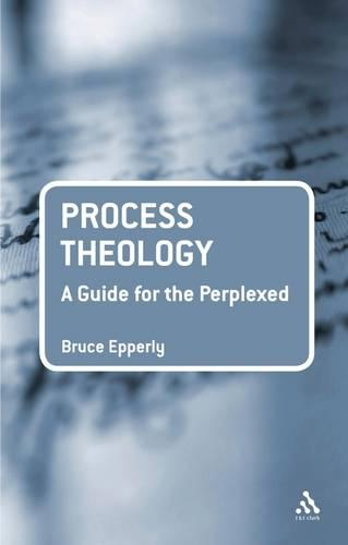 Process Theology: A Guide for the Perplexed - Guides for the Perplexed (Paperback)
