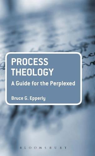 Process Theology: A Guide for the Perplexed - Guides for the Perplexed (Hardback)