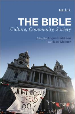 The Bible: Culture, Community, Society (Paperback)