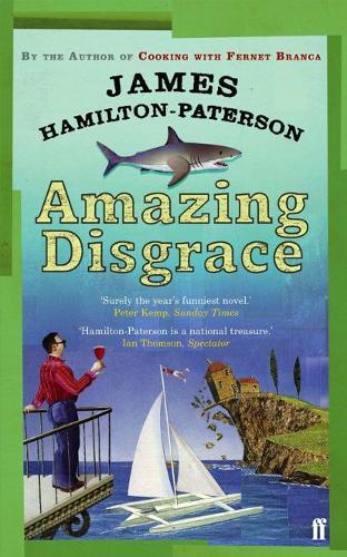 Amazing Disgrace (Paperback)