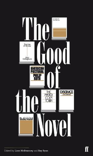 The Good of the Novel (Paperback)