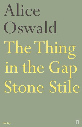 The Thing in the Gap Stone Stile (Paperback)