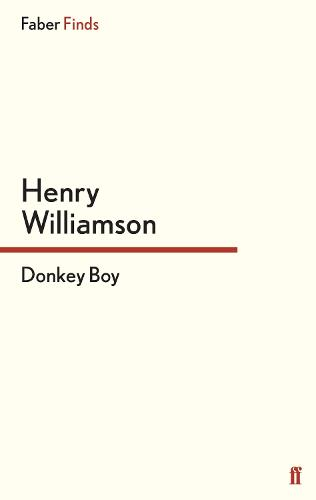 Donkey Boy - A Chronicle of Ancient Sunlight (Paperback)