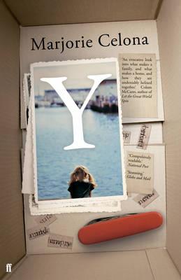 Y (Hardback)