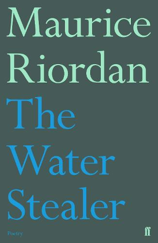 The Water Stealer (Paperback)