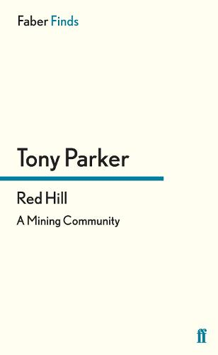 Red Hill: A Mining Community (Paperback)