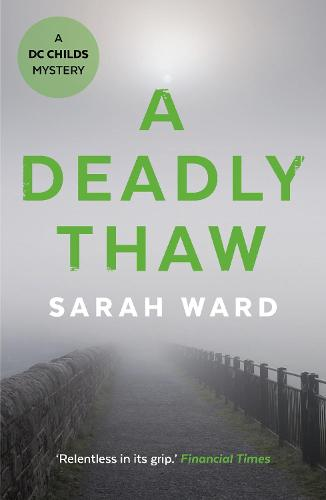 A Deadly Thaw - DC Childs mystery (Paperback)
