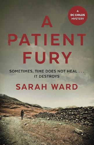 A Patient Fury - DC Childs mystery (Hardback)