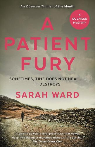 A Patient Fury - DC Childs mystery (Paperback)