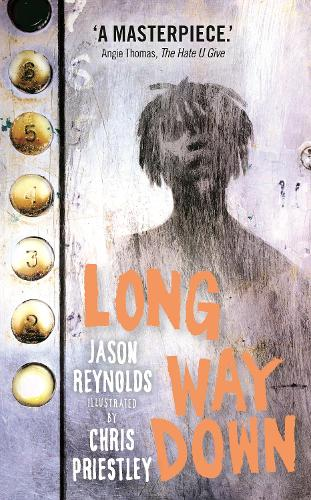 Long Way Down (Hardback)