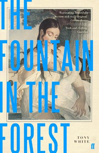 The Fountain in the Forest (Paperback)