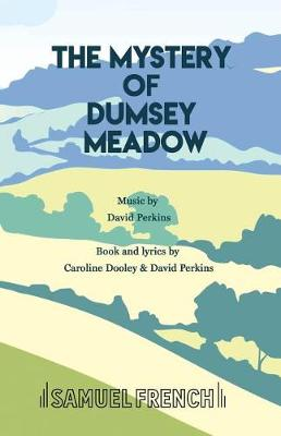 The Mystery of Dumsey Meadow (Paperback)