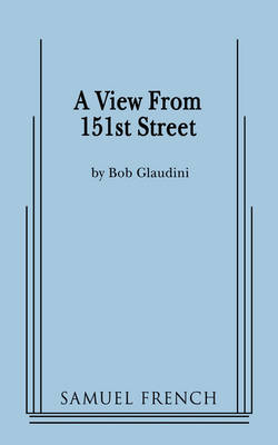 A View From 151st Street (Paperback)
