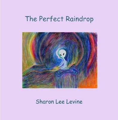 The Perfect Raindrop (Paperback)