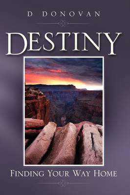 Destiny Finding Your Way Home (Paperback)