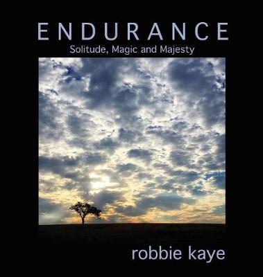 Endurance: Solitude, Magic and Majesty - Robbie Kaye Trilogy 1 (Hardback)