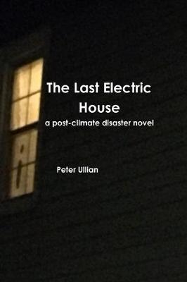 The Last Electric House: a post-climate disaster novel (Paperback)