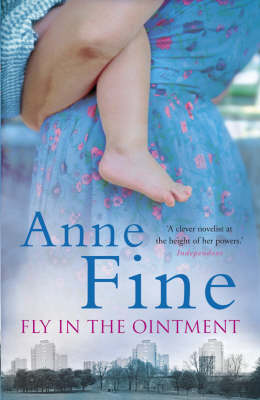 Fly in the Ointment (Hardback)