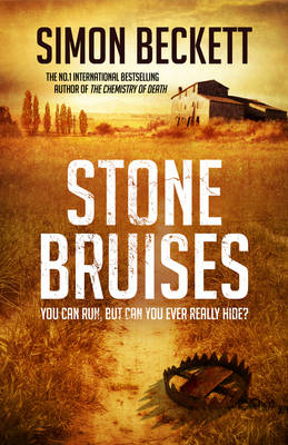Stone Bruises (Hardback)