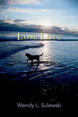 Lost Love (Paperback)