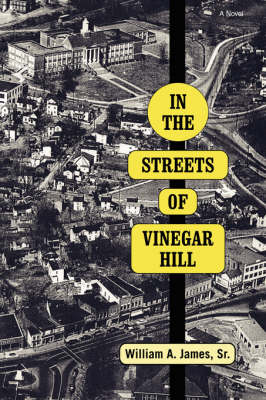 In The Streets Of Vinegar Hill (Paperback)