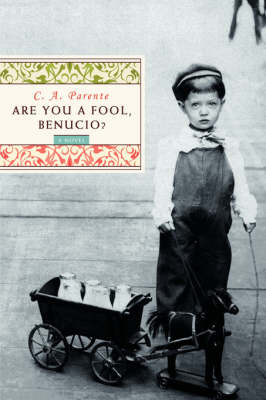 Are You a Fool, Benucio? (Paperback)
