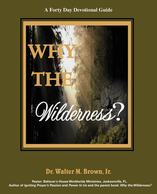 Why the Wilderness: A Forty Day Devotional Guide (Paperback)