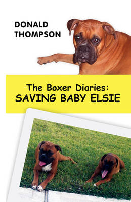 The Boxer Diaries: Saving Baby Elsie (Paperback)