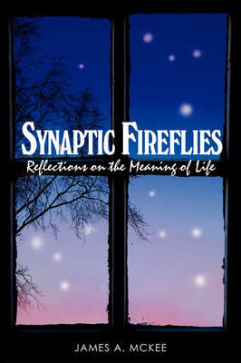 Synaptic Fireflies: Reflections on the Meaning of Life: A Seeker's Journal (Hardback)
