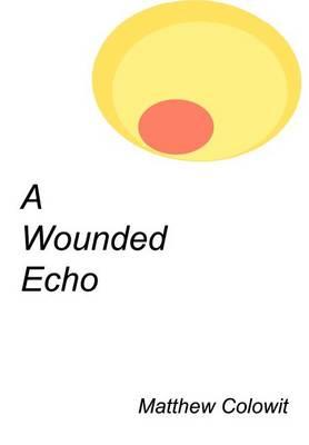 A Wounded Echo (Hardback)