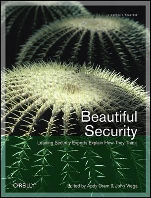 Beautiful Security (Paperback)