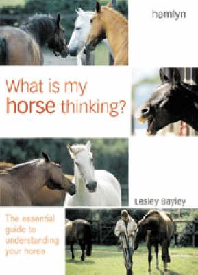 What is My Horse Thinking? (Hardback)