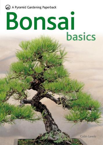Bonsai Basics - Pyramid Paperbacks (Paperback)