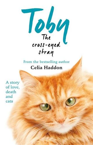 Toby The Cross-Eyed Stray (Paperback)