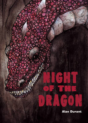 Pocket Chillers Year 4 Horror Fiction: Book 2 - The Night of the Dragon - POCKET READERS HORROR (Paperback)