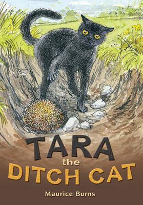 POCKET TALES YEAR 4 TARA THE DITCH CAT - POCKET READERS FICTION (Paperback)