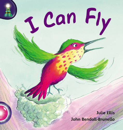 Lighthouse Reception Pink B: I Can Fly - LIGHTHOUSE (Paperback)