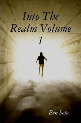 Into The Realm Volume 1 (Paperback)