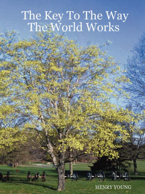 The Key to the Way the World Works (Paperback)