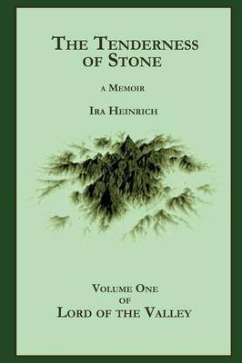 The Tenderness of Stone (Paperback)